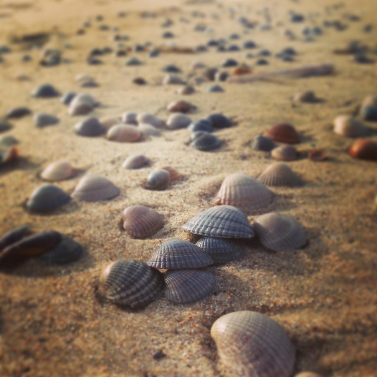 Glücklich Sein Ein Besonderes Gedicht Vom Meer
